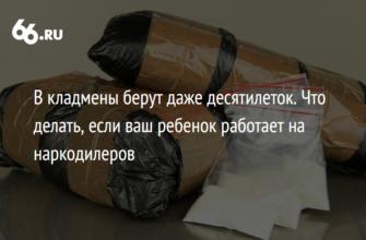 Игра в прятки: почему молодежь идет в кладмены   Статьи   Известия