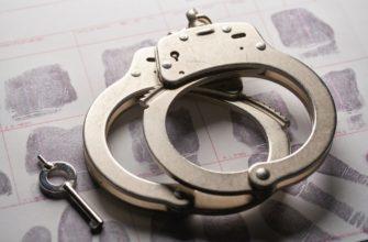Когда для подозреваемого преступника в США устанавливается залог, а затем ему платят, куда идут эти деньги?  - allqa.app